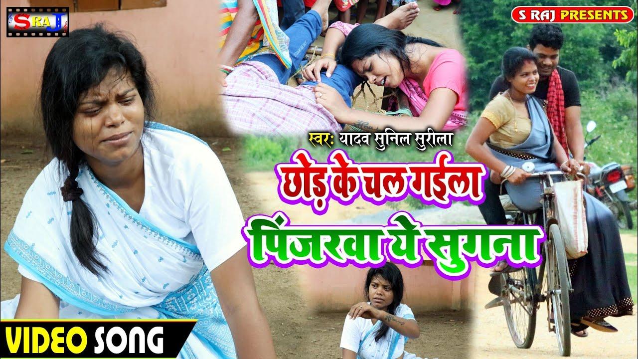 #Video   छोड़ के चल गइला पिंजरवा ये सुगना   #Yadav Sunil Surila   New Bhojpuri Hit Song 2020