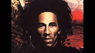 Bob Marley & The Wailers - Natty Dread - 08 - Revolution