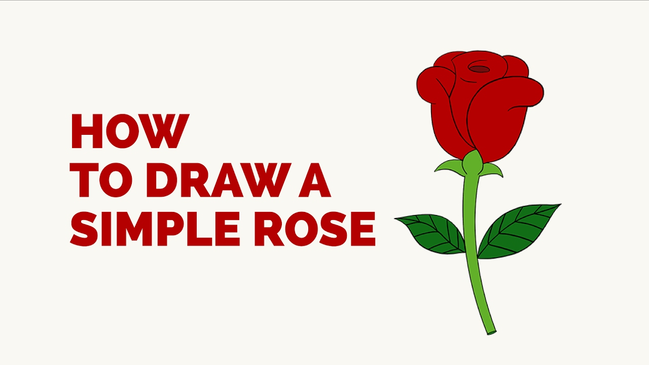 How To Draw A Simple Rose In A Few Easy Steps Drawing Tutorial For