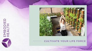 Cultivating Your Life Force