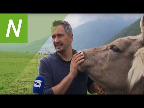 "Rai Südtirol ""Land&Leben"": Global Forum, Heumilch"