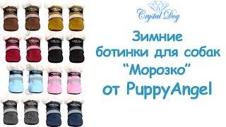 Обувь для собак - Ботинки для собак 'Морозко'