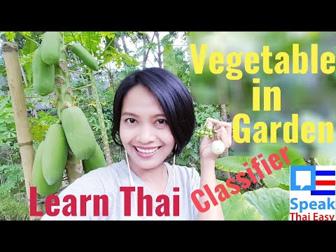 164-Speak Thai Easy || Learn Thai garden || Thai classifier || Thai vegetable