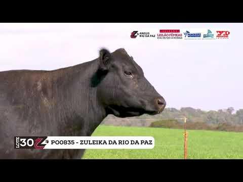LOTE 30   PO0930 ZULEIKA DA RIO DA PAZ TE