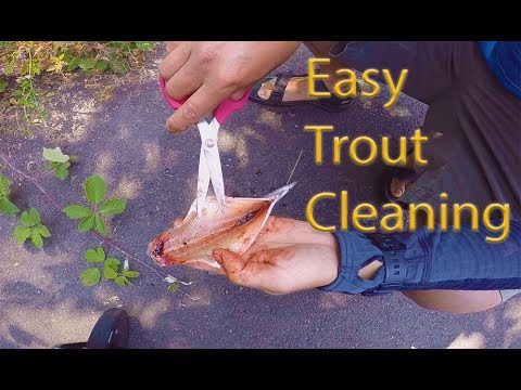 How To Clean Trout