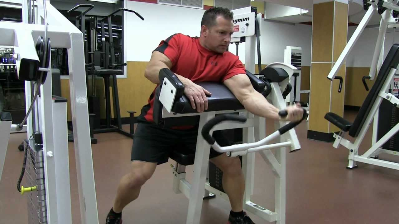Image result for one-arm machine preacher curls