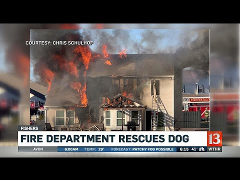 Fishers Fire Department Rescues Dog