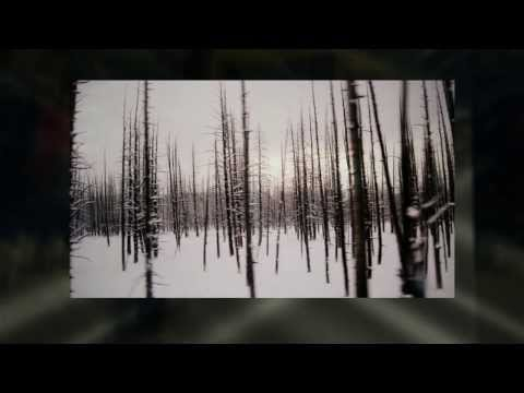 Enjoy a Yellowstone Winter on a Rocky Mountain Vacation