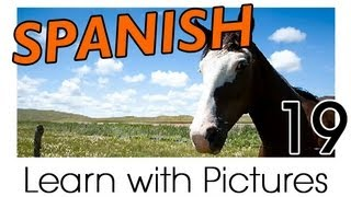 Learn Spanish -  Spanish Farm Animals Vocabulary
