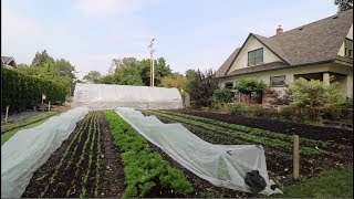 HOW TO Align your Beds and Greenhouses
