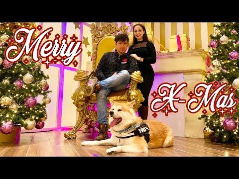 AKITA INU - Japanese Akita At A German Christmas Market | Christmas From A Dog's Point Of View | 秋田犬
