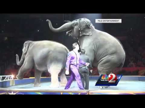 Owners Speak About Ringling Bros Circus Closing