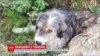 На Київщині чоловік побив собаку та кинув тіло під ноги жінці, яка опікувалась твариною