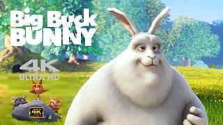 การ์ตูน big buck bunny แอนิเมชั่นไทย HD UHD ใหม่