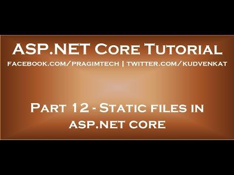Static Files In Asp Net Core