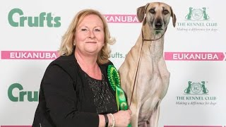 Crufts 2017 | Best of Breed winner Lisa Smith and sloughi Gus