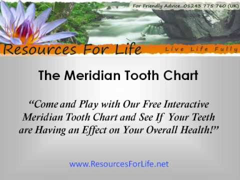 Meridian Tooth Chart - How Tooth Decay Affects The Entire Body Video