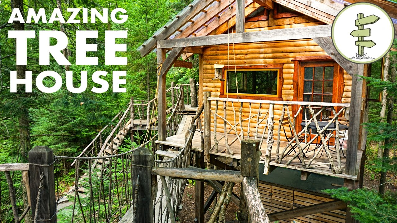Tiny Tree House With Hanging Bridge Makes Off Grid Living Fun Youtube