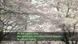 Video Sakura  -Cherry Blossom- download MP3, 3GP, MP4, WEBM, AVI, FLV Juli 2018