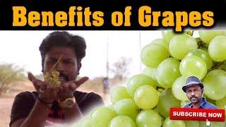 திராட்சை பயன்கள் | Benefits of green grapes | Esh Health Tips