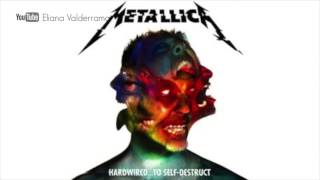 Gambar cover Metallica Moth Into Flame (official audio)