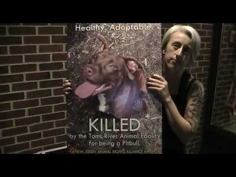 Kate Riviello: PILE OF SEVEN DEAD PIT BULLS, TOMS RIVER NJ