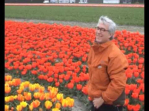 Rudy Rucker tip-toeing through the Tulips of Amsterdam, 2007