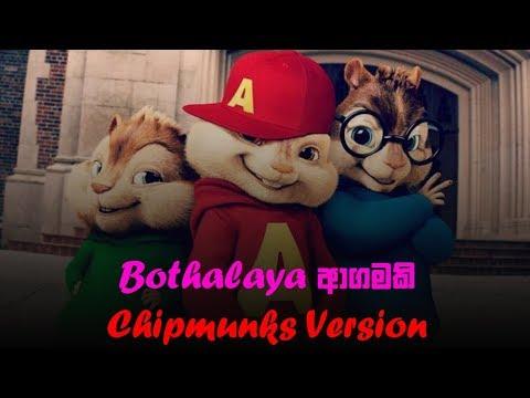 adaraya-agamaki-2(chipmunks-version)---bothalaya-agamaki-බෝතලය-ආගමකි-parody-version