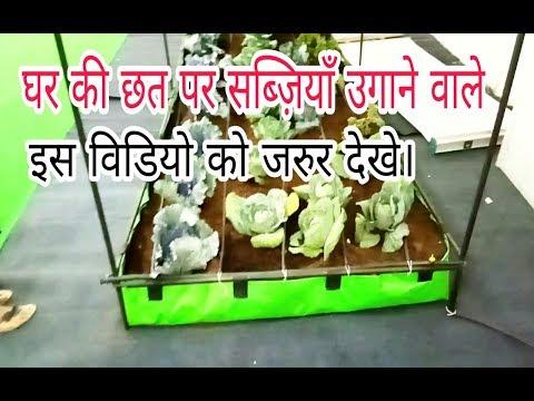 छत पर बागवानी का आधुनिक तरीका   Portable Farming System   Home Gardening