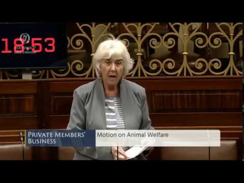 """Cruelty to animals is unacceptable"": Dail Debate 3rd October 2017"