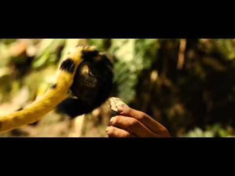 Sur la piste du Marsupilami [ film complet ] streaming vf