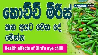 කොච්චි මිරිස් කෑවොත් වෙන දේ මෙන්න : Benefits of bird