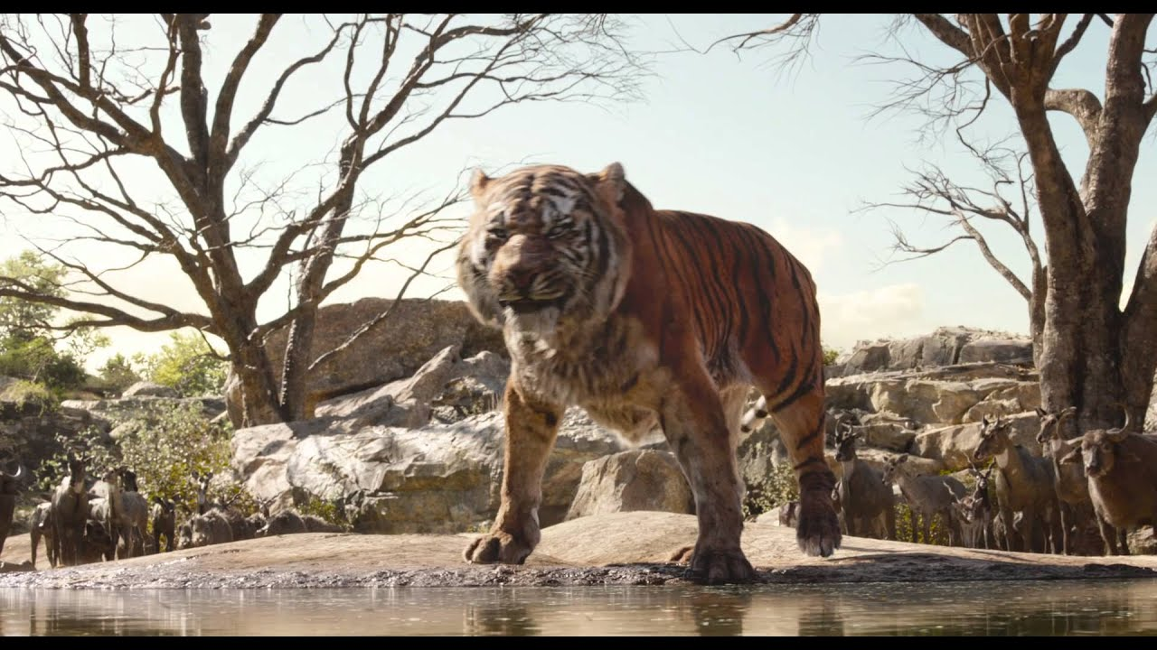 Download THE JUNGLE BOOK   The Legacy   Official Disney UK