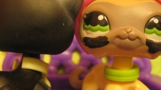 (LPS)Littlest Pet Shop