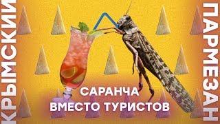Крым: саранча вместо туристов | Крымский.Пармезан