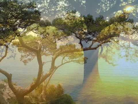 """Képtalálat a következőre: """"Amerre én járok, még a fák is sírnak,"""""""