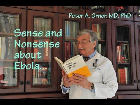 Ebola Sense and Nonsense