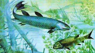 Кистепёрые рыбы (рассказывает палеонтолог Иварс Зупиньш)