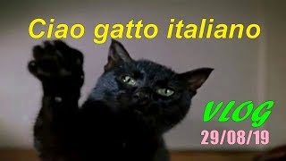 VLOG 29/08/19  ПРИВЕТ Итальянскому коту от нашего .Новая слесарка