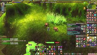World of Warcraft Gold Making guides - MoP Skinning Great Farming Spot