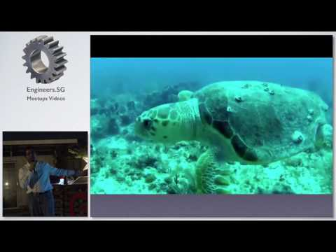 Biomimetic Robots and Sensors for Ocean Exploration - Tech Tarik Ocean Exploration