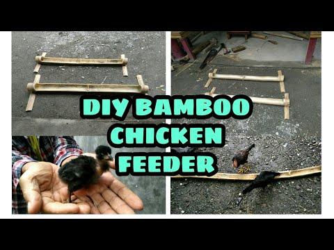 DIY BAMBOO CHICKEN