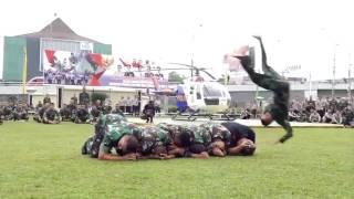 Video Latihan Bersama Bela Diri TNI-Polri dan Pamong Praja download MP3, 3GP, MP4, WEBM, AVI, FLV November 2018