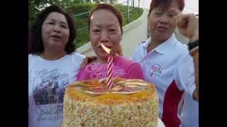 碧山柔力球俱乐部成立七周年回顾碧山柔力球俱乐部在新加坡的成长2008-20...