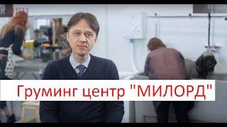 Смотреть видео обучение грумингу в москве