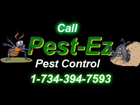 Livonia Michigan Pest Control And Wildlife Management Pest-Ez