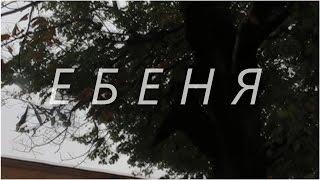 ЕБЕНЯ. АРТХАУС. КАМЕРА 10 МП...