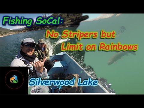 Catching Trout Limits Silverwood Lake | ReCast Fishing SoCal