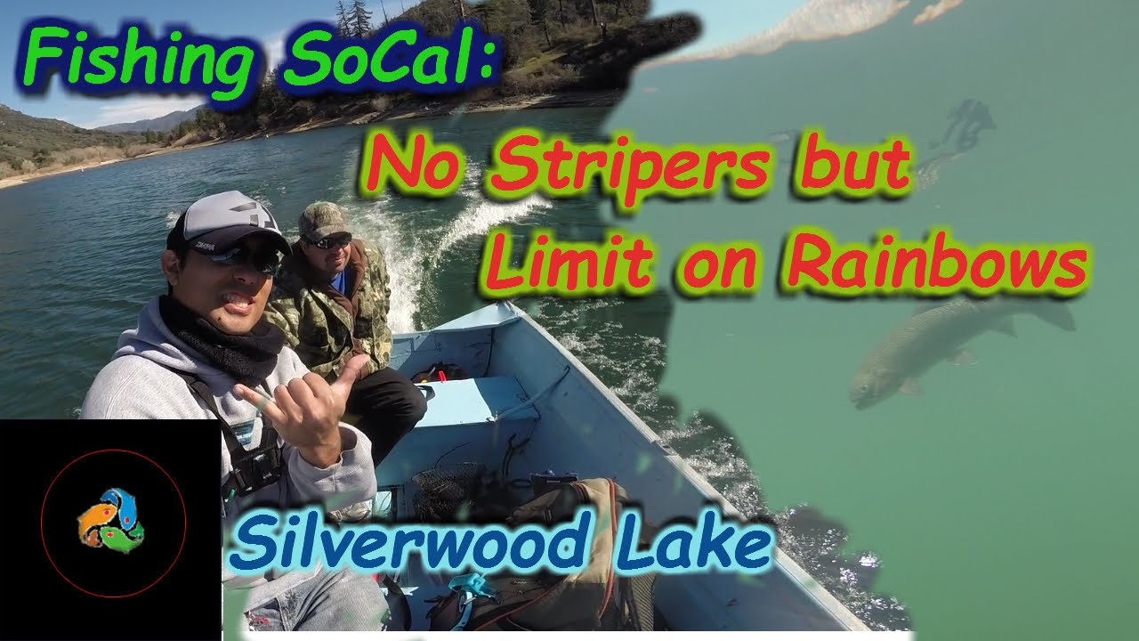 Catching trout limits silverwood lake recast fishing for Silverwood lake fishing report