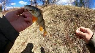 Открытие сезона по открытой воде 2020. Рыбалка на спиннинг